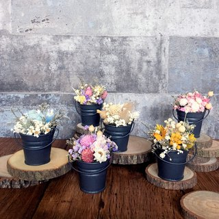 | Mini potted flower custom | Mini iron bucket small potted flower. Dry flowers. Small scenery on the desk