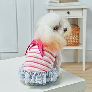 Pet clothes Navy collar striped lace dress