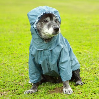 Waterproof breathable cool feeling pet raincoat - blue