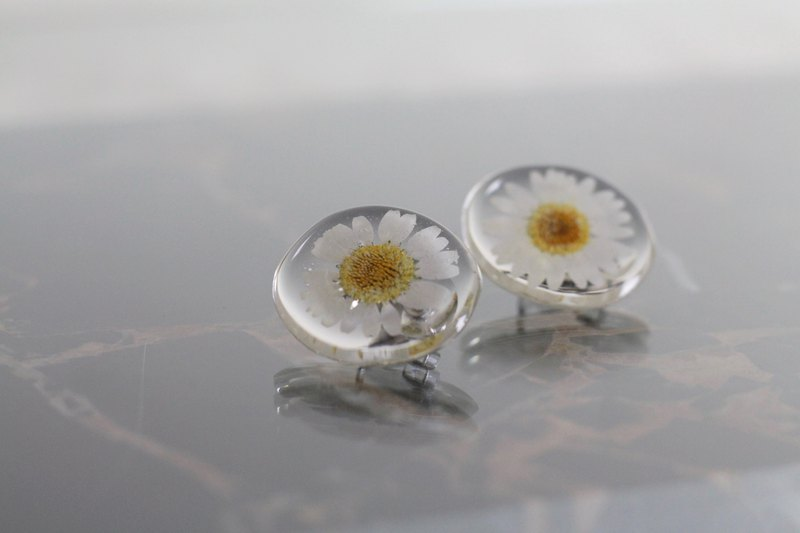 / Flower bush / Dry flower resin earrings /