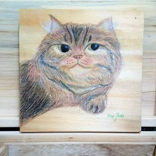Chubby Cat color pencil drawing creation