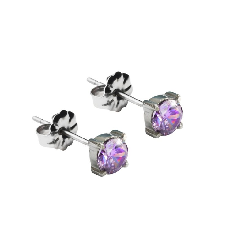 Titanium Earrings-Purity Zircon-Purple