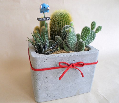 【Generous Potted Plant】Cement Flower Pot/Cement Pot/Cement planting (without plant)