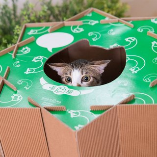 Meow meow billowing house [-] is a lazy cat house is green toy infinite combination of cute playful cat scratch board design