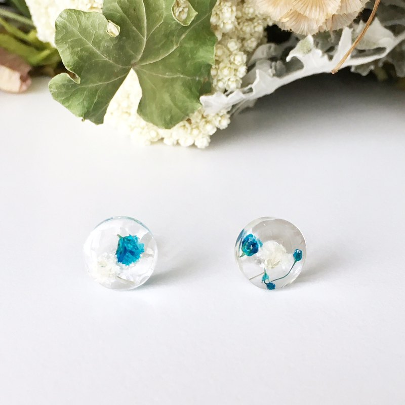 Stud earrings for pierced ears contained blue babys breath (12mm)