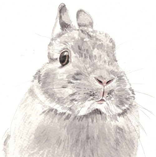 Original Watercolour Painting (A5) - Bunny