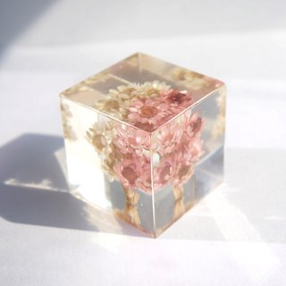 Dried flower - Huang pink flowers - dried flowers decoration three-dimensional square
