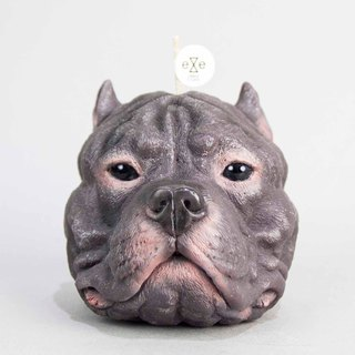 Staffordshire Bull Terrier (pit bull) candle - Purple