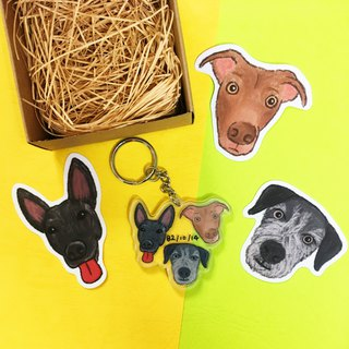 Customized pet illustration acrylic key ring