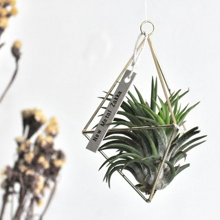 Air pineapple / floating ornaments / triangle / gold / small