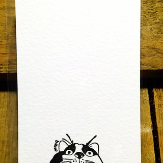 Which cover | swagger cat | limited edition handmade postcards _ sesame paragraph