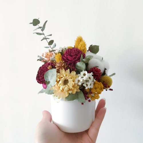 Small flower potted dry flower Everlasting flower exchange gift opening blessing