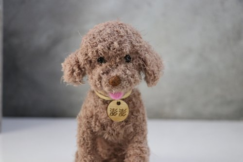 (A pair of price) 13 ~ 15cm pet avatar (feiwa Fei baby hand made] Poodle pet doll (welcome to order your dog)