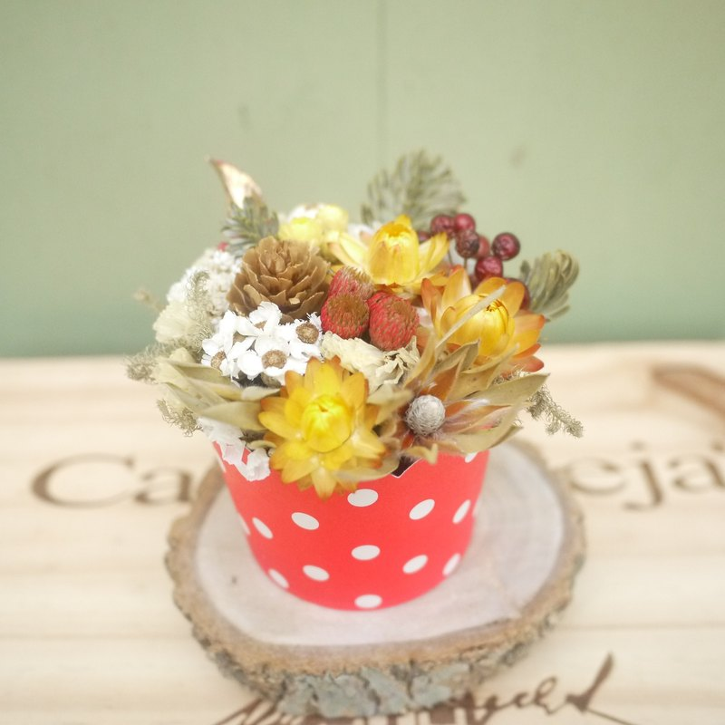To be continued | dried flowers small potted flower cake wedding gift was a small wedding gifts bridesmaid ceremony arranged home office decorations props photography Spa smaller spot was attached Tihe