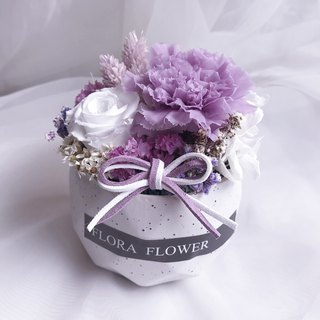 Flora flower Purple Carnation Eternal Small Potted Gift Box/ Pot Dry Bouquet Mother's Day Bouquet Birthday Gift Pendant Mother's Day Flower Gift Box