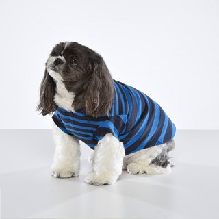 Shirt collar two-color gradient stripes pet clothes - wide version