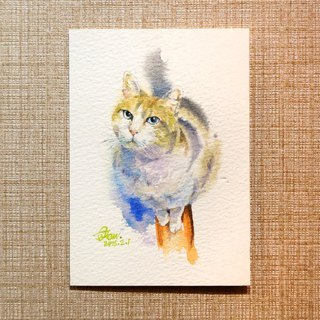 Watercolor painting [catwalk cat]