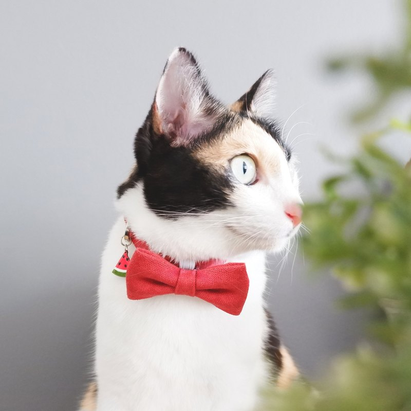 Velvet - Breakaway cat cotton collar with Watermelon Charm
