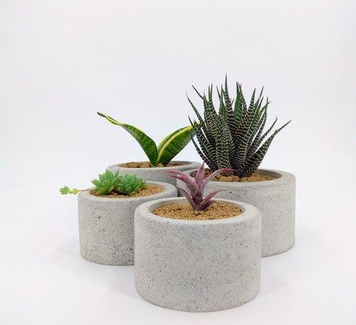 [Circular Basin] Cement Flower/Cement Pot/Cement Plant (Without Plant)