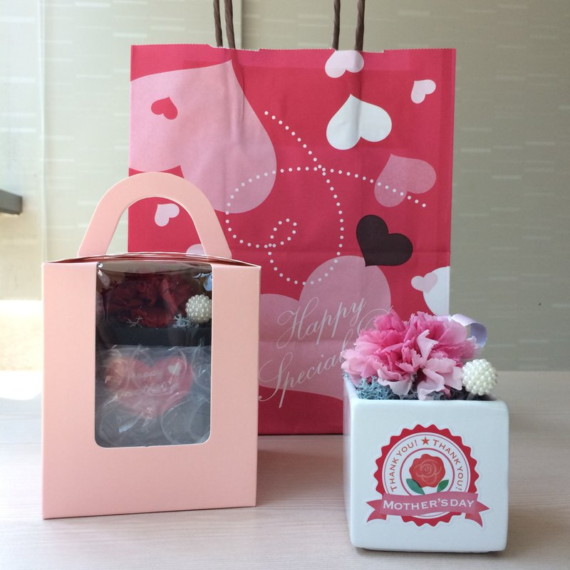 Kinki Handmade I Love Mommy No2 Elegant Pink Peach Limited Eternal Flower Flowers Potted Mother's Day Carnation