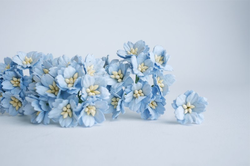 Paper flower, 50 pcs. small cherry blossom supplies, 2 cm. bluebell color.