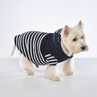 Design Sensual Stitching Stripe Pet Cap T-Wide Edition