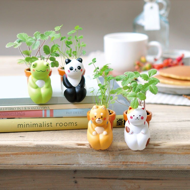 Have a seed Pot Planter / Healing Animals