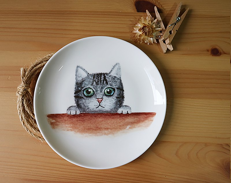 5 Enamel Plate - Probe Kitty / Microwave / By SGS / Cat / Birthday Gift / Gift Exchange / Children
