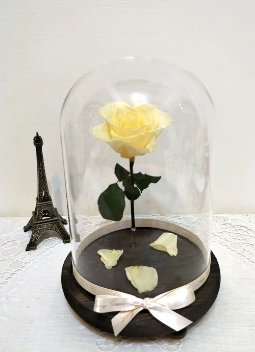 l Floating rose magic lamp glass cover flower ceremony - fresh yellow l*beauty and the beast*lover*love*decoration*not withered flower. star flower. immortal flower*exchange gifts -