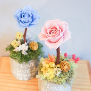 [lover flower] not withered flowers, lover, birthday table, flower opening, home furnishings