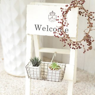 [Good day fetish] Japan zakka / Welcome flower stand / potted plant