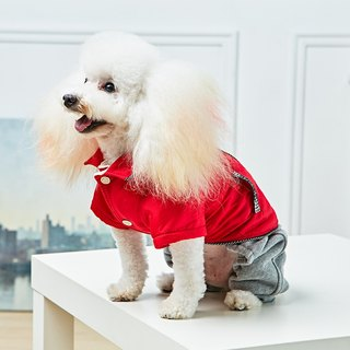 Pet clothes shiny windproof jacket (red)
