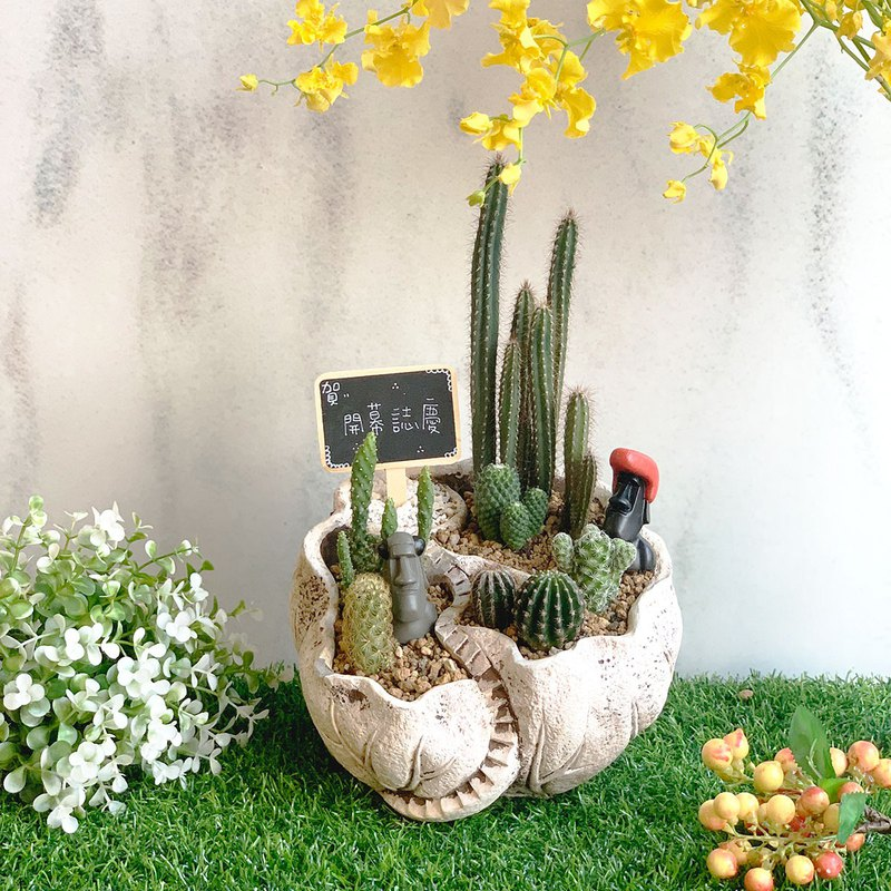 璎珞Manor*PD13/Cactus/Succulent Plant/Opening Gift/Office Small Object/Home Decoration
