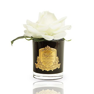 CoteNoire Fragrance Flower - Big Ivory White Rose Fragrance Flower