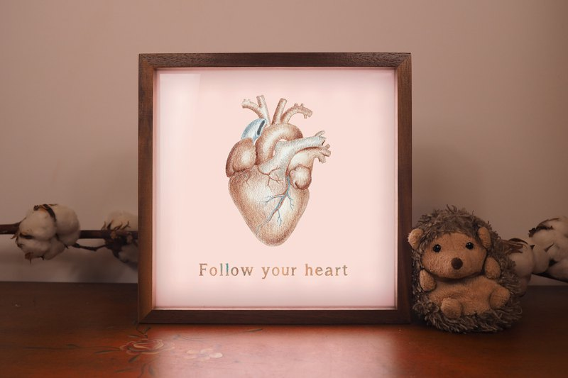 Medical illustration light box Emma Cheng / 骷髅 / brain / heart / kidney / skin cake