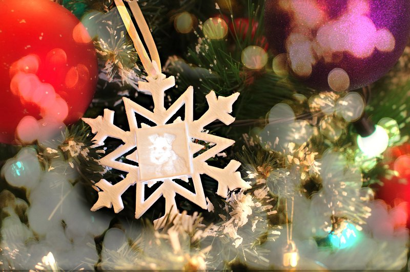 Photo Christmas Ornament, Lithophane Ornament, Dog Cat Ornament, 3D printed Gift