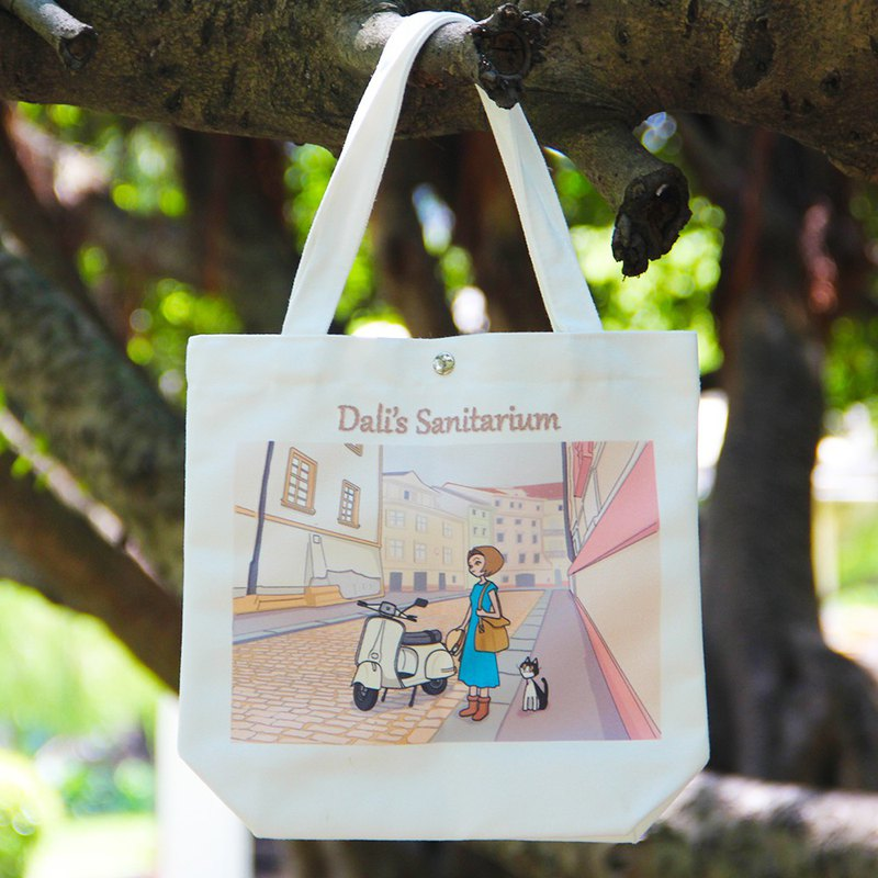 Old cat sanatorium meets canvas bag
