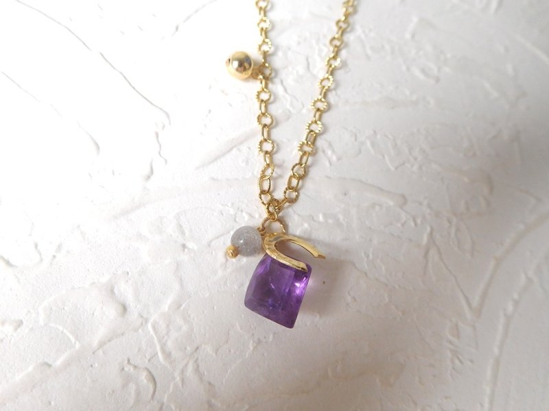 Special alloy amethyst horseshoe pendant in the long chain
