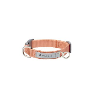 [Tail and me] classic nylon belt collar pink orange