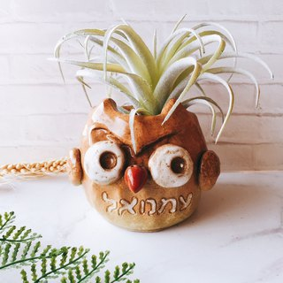 P-67 God in the Eagle │Yoshino Hawk x Owl Gospel Flower Handmade Pottery Succulent Healing Cute Unique Gift