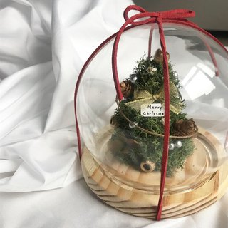 Christmas tree dry flower home decoration in mind
