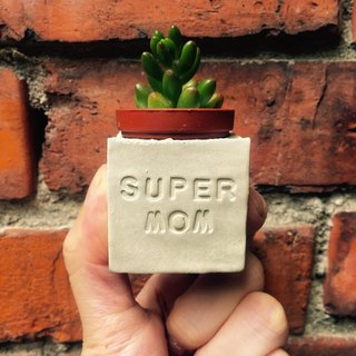 SUPER MOM~!!Ultra Mum~!!Mother's Day Meat Magnet Potted