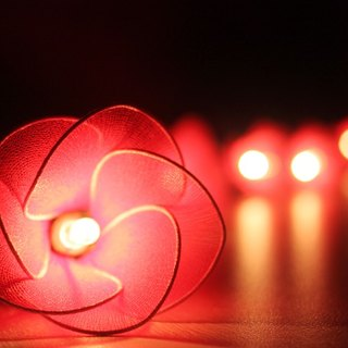 20 Red Flower String Lights for Home Decoration Wedding Party Bedroom Patio and Decoration