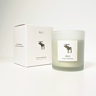Swedish Design 200g Älg Soy Wax Candle - Forest Note