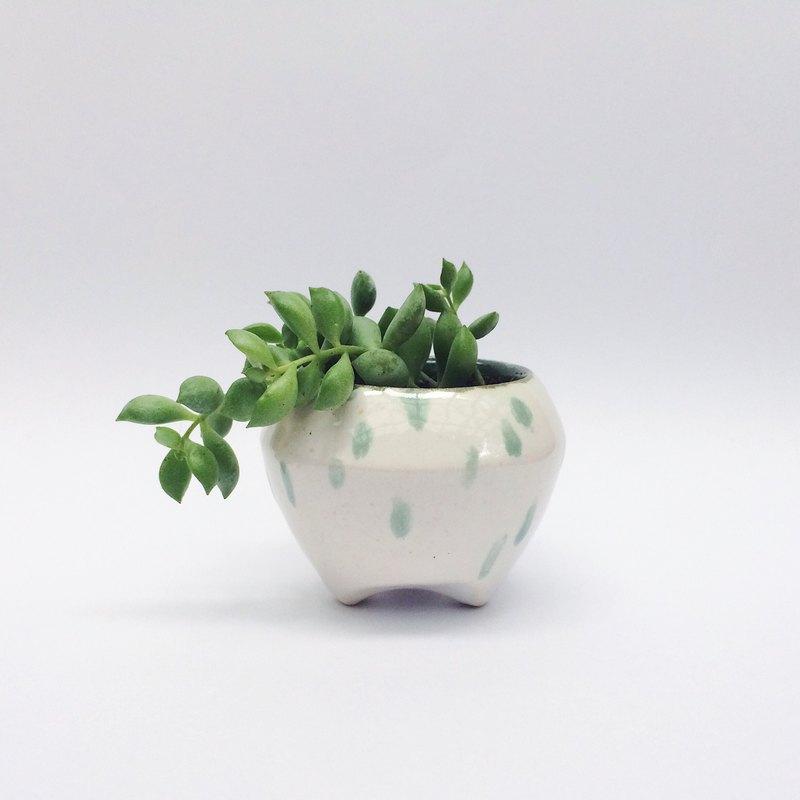 Japanese Small Potted Plants Designer Hsushaoyi Hello Animals