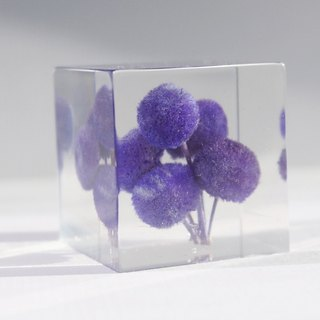 Purple Button Flowers - dried flowers decoration three-dimensional square