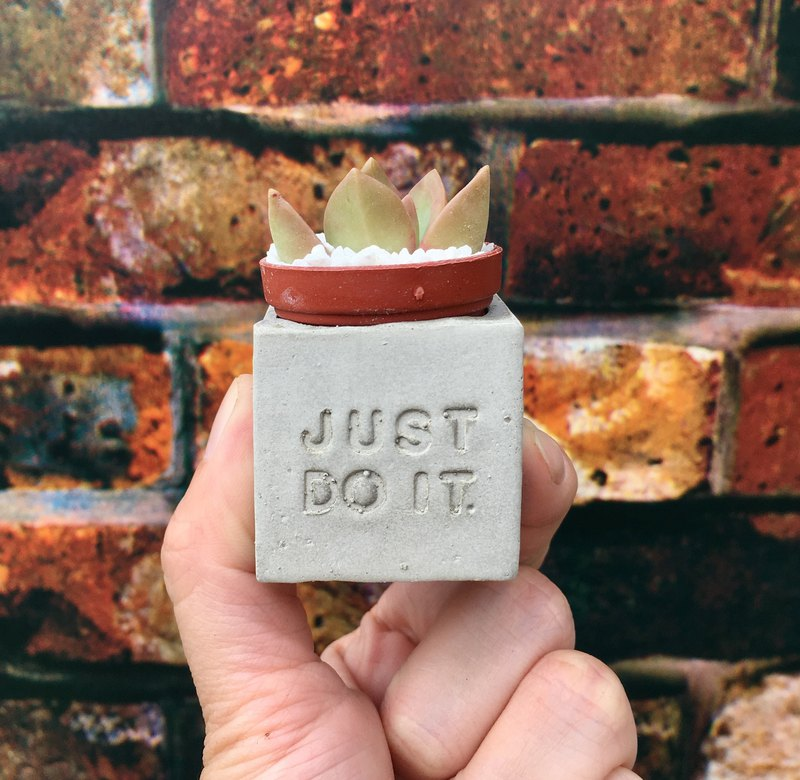 Just do it. Do it right. Meaty magnet potted plants