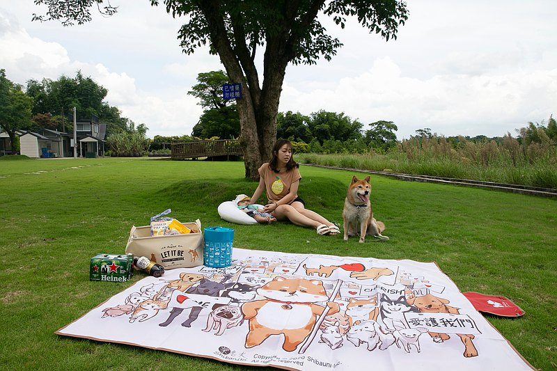 Shiba Inu University-Chai Boss Caring for Animal Picnic Mat Sand Pavilion Thick Waterproof Shiba Inu Peripheral