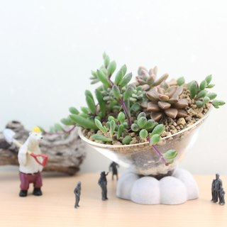 Cement planting succulents - inverted triangular pyramid glass