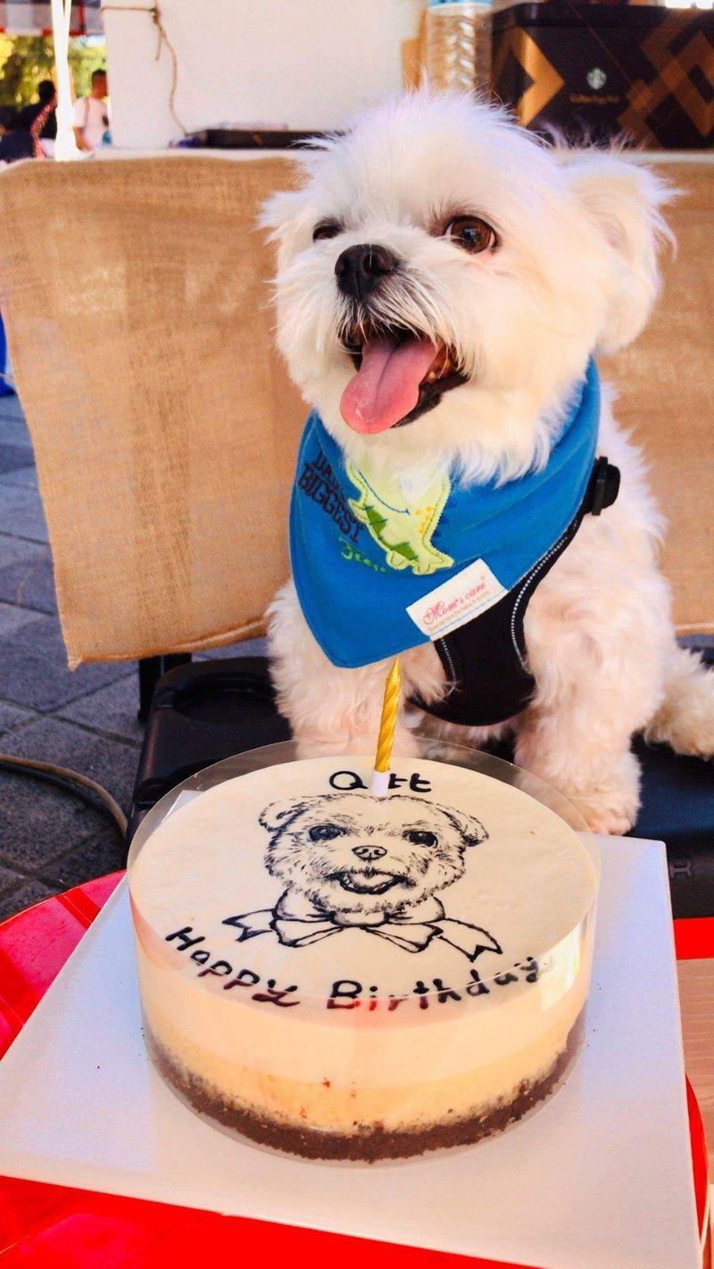 【報價】毛小孩_客製寵物可食乳酪蛋糕 (5.5~8吋) 生日蛋糕 情人節 紀念日